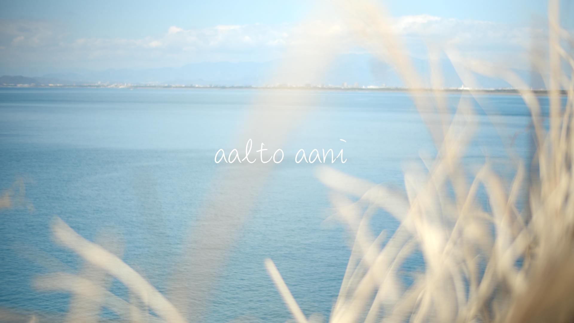 aalto aani website